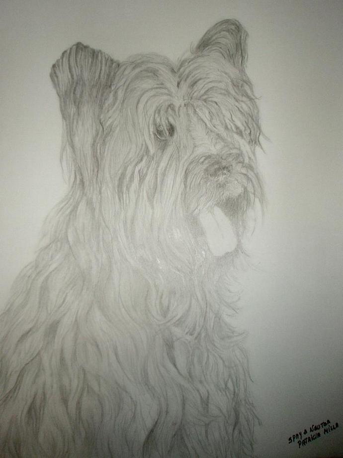 """Dogo Mckoy"","