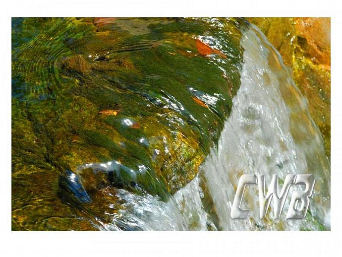 WaterColors Green fine art print