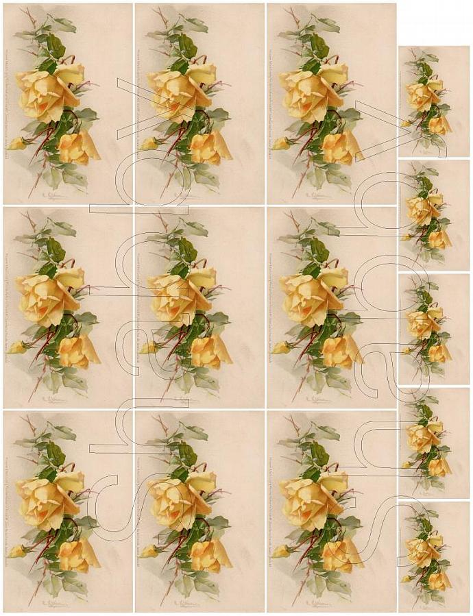 Shabby chic Yellow ROSES  digital collage sheets for scrapbook and cards  DC102