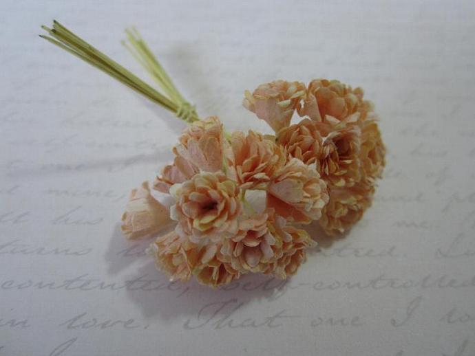 100- Mini Sherbet Chrysanthemum Flowers
