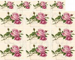 Item collection 2967832 original