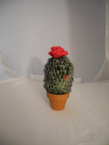 Friendly Little Cactus