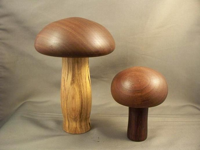 Set Of Two Mushrooms