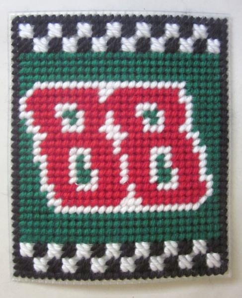 Dale Earnhardt Jr. 88 Nascar tissue box cover in plastic canvas PATTERN ONLY