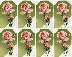 Item collection 3310250 original