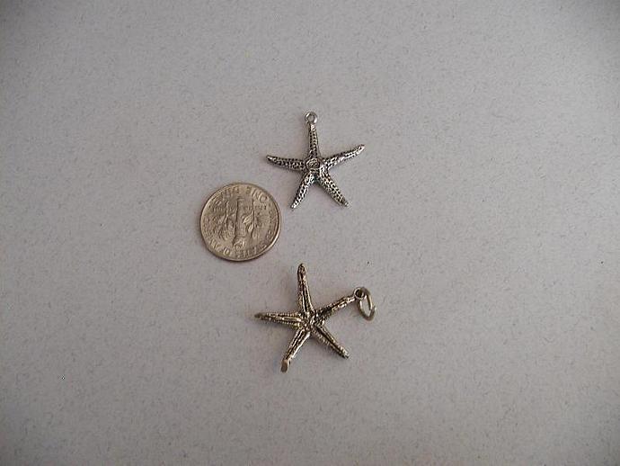 Starfish SS Chaarm