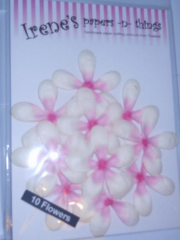 paper flower pack