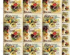 Item collection 3535691 original
