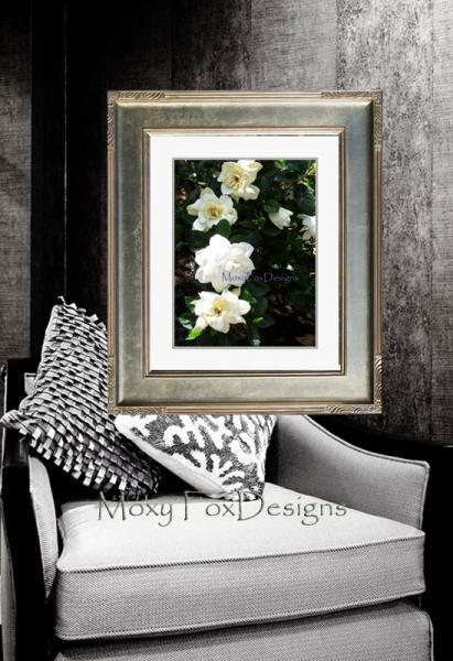 Photo -- MORNING GARDENIAS Fine Art Photograph Tropical Flowers 8 x 10 Print