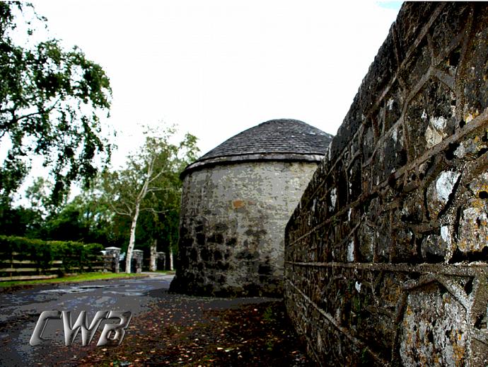 8x10 Fine art print  - Celtic Wall