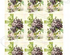 Item collection 3626733 original