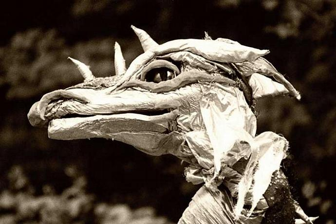 Dragons Are For Real Fine Art Photo