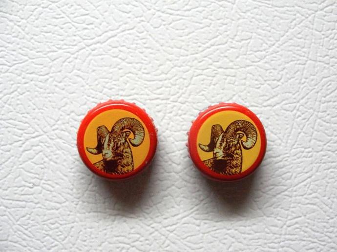 Shiner Bock Bottle Cap Magnet Set