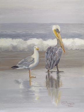 """Seagull And Pelican"" Giclee Canvas Print by Carol Thompson"