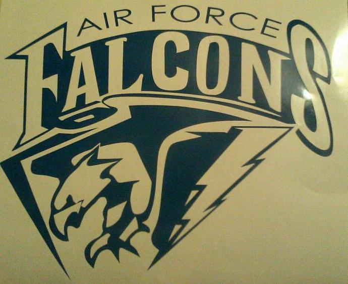 New Vinyl Decals AIR FORCE FALCONS Cornhole Decals - Window Decals Ready To