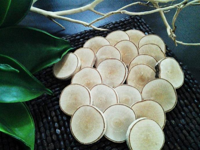 75 Natural White birch  Tree slices discs for Crafts, DIY projects- Name tags -