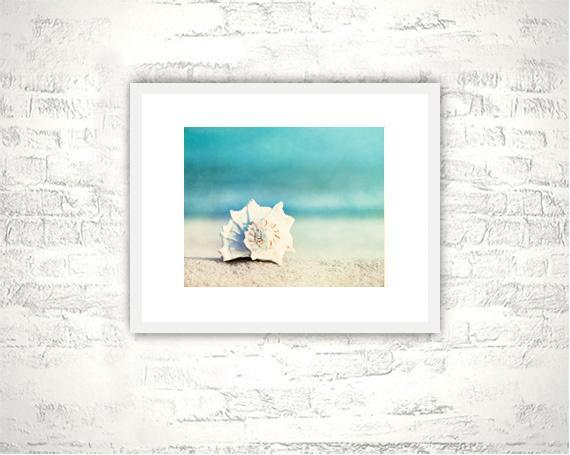 Beach Photography - 8x10 Seashell Print - Aqua Blue Wall Art Photo