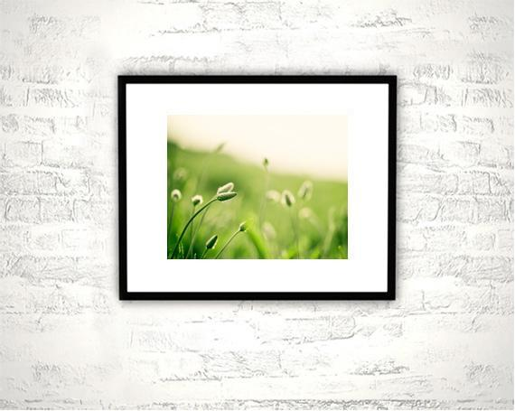 Green Nature Photography - 8x10 Botanical Print - Green Wall Art Photograph