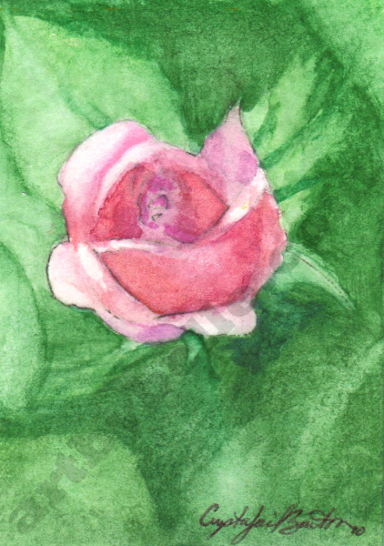 ACEO, Spring Bud, Print from Belle