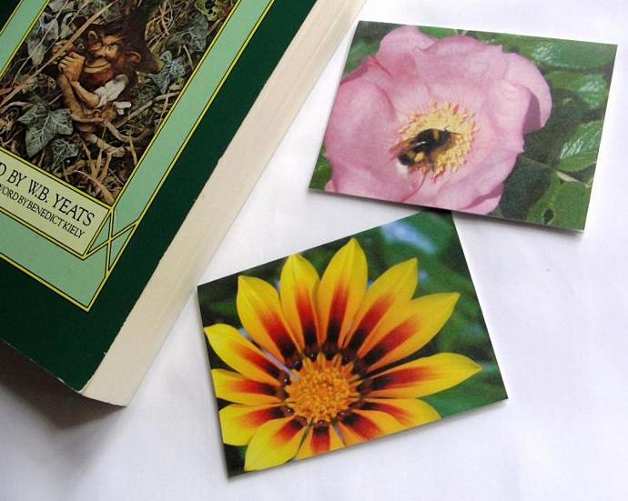 Garden Glory Set of Magnetic Bookmarks