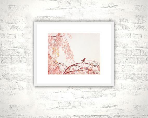 Pink Photography - 8x10 Bird Print - Nature Pastel Nursery Art Photograph