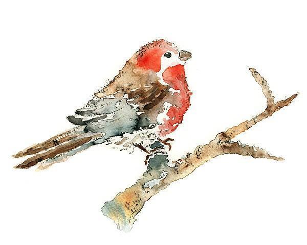 Red Bird Watercolor, print of original watercolor painting, bird art print,