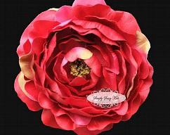Item collection 6268744 original