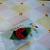 Ladybug Resting FELT clippie