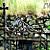 Glendalough Gate fine art print