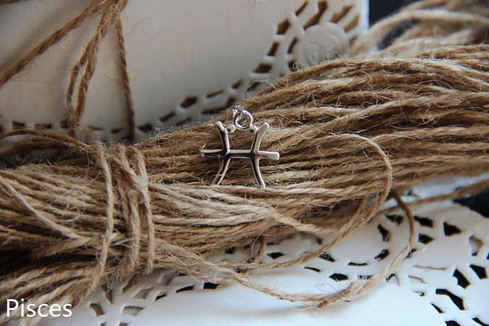 Pisces Necklace, Pisces Zodiac, Pisces Charm Necklace, Silver Charm Necklace,