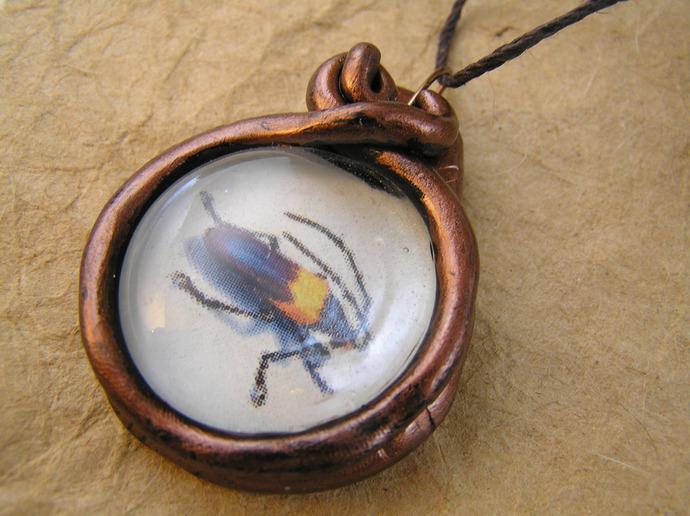 Beetle victorian illustration pendant in copper