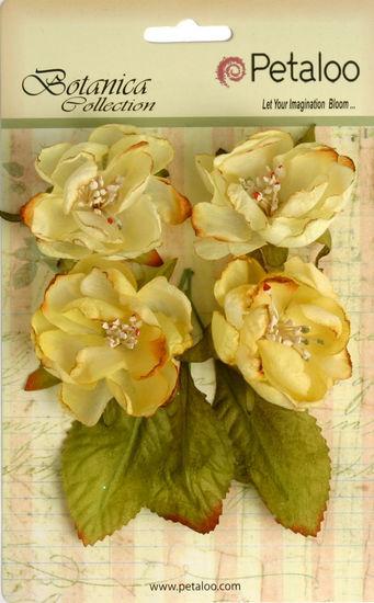 Botanica Blooms x 4 - Soft Yellow