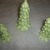 3pc set of Holiday Christmas village houses Evergreen Trees