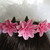 French Barrette with Pink Cold Porcelain Flowers