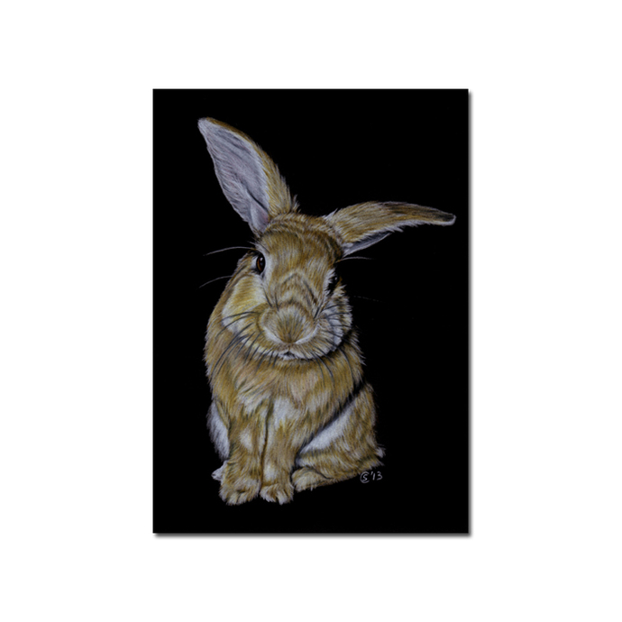"5x7"" COMMISSION PET Custom PORTRAIT Sandrine Curtiss Original Art animal colored"