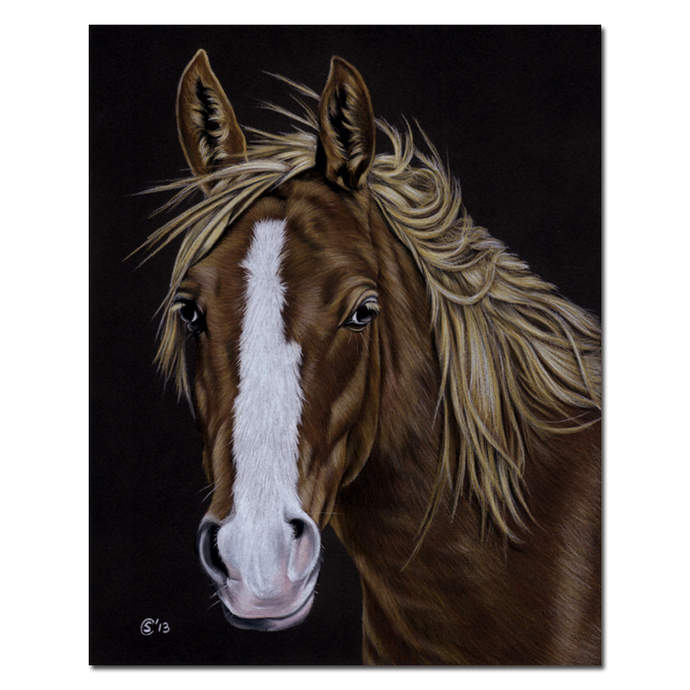 "16x20"" COMMISSION PET Custom PORTRAIT Sandrine Curtiss Original Art animal"