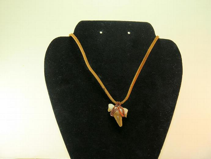 Mens or Unisex Wire Wrapped Moroccan Fossil Shark Tooth on Leather