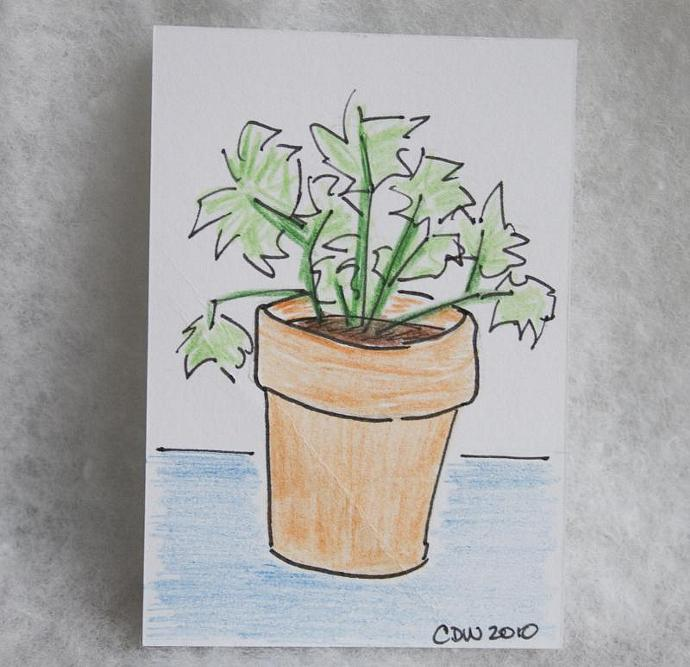 Potted Plant original art ACEO