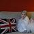 Snowy White - Ballerina Length Fluff N Stuff Tutu