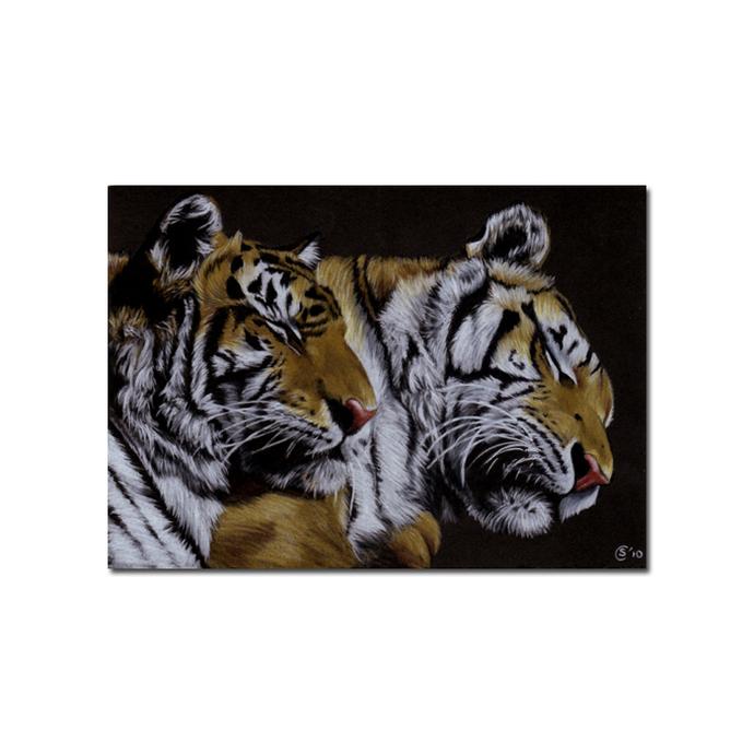 TIGERS big cat animal feline kitty kitten drawing painting Sandrine Curtiss Art
