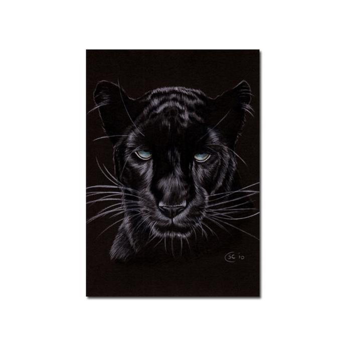 BLACK PANTHER 14 big cat animal feline kitty kitten drawing painting Sandrine