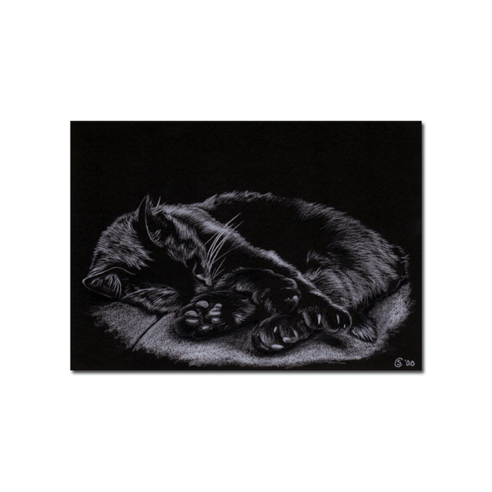Black CAT Sunshine 7 kitten Halloween chat noir drawing painting Sandrine