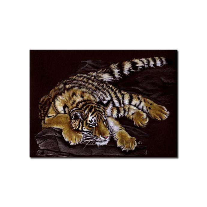 Tiger 39 big cat animal feline kitty kitten drawing painting Sandrine Curtiss