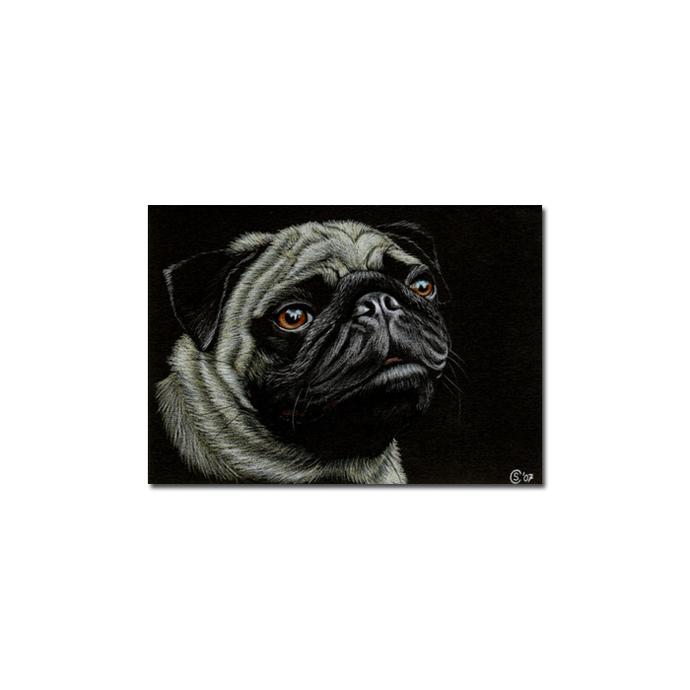 PUG dog puppy pet pencil painting Sandrine Curtiss Art Limited Edition PRINT