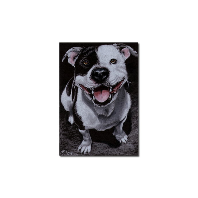 French BULLDOG 4 dog puppy pet pencil painting Sandrine Curtiss Art Limited