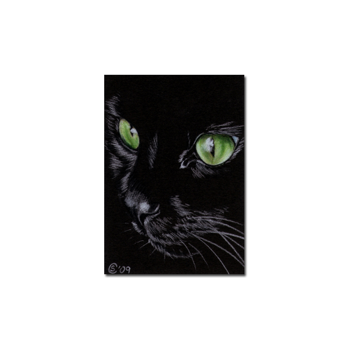 Black CAT 150 kitten Halloween chat noir drawing painting Sandrine Curtiss Art
