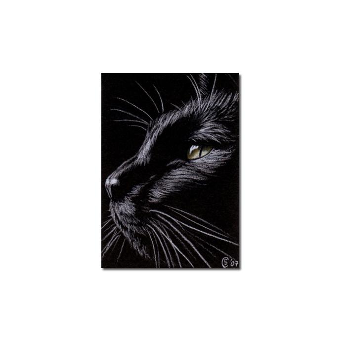 Black CAT 78 kitten Halloween chat noir drawing painting Sandrine Curtiss Art