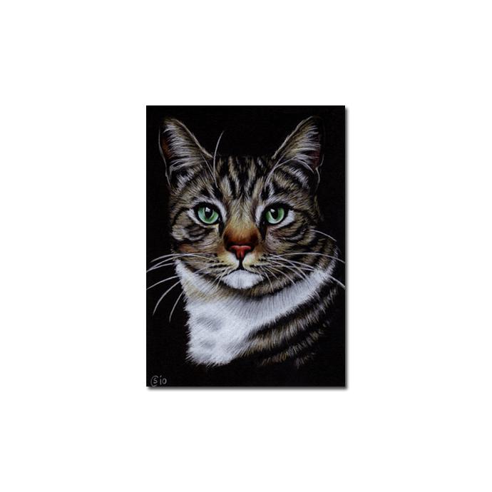 Tabby 67 CAT grey ginger orange tiger kitty kitten drawing painting Sandrine