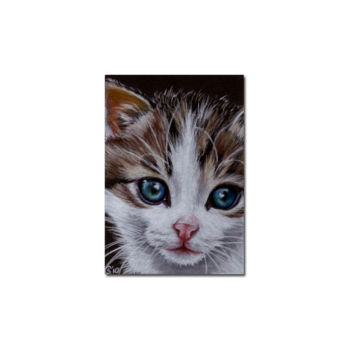 Tabby 59 CAT grey ginger orange tiger kitty kitten drawing painting Sandrine