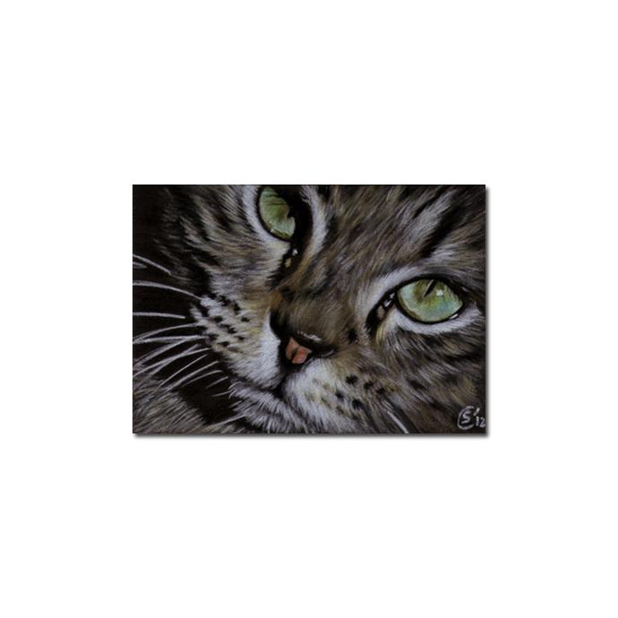 Tabby 97 CAT grey ginger orange tiger kitty kitten drawing painting Sandrine